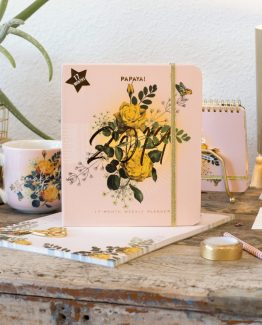 Journals / Sketchbooks