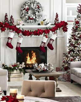 HOLIDAY DECOR/SPECIAL OCCASION