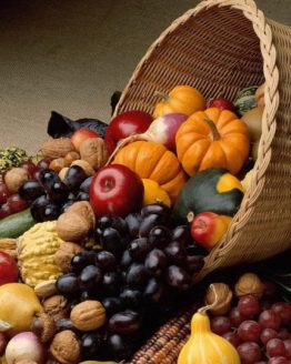 THANKSGIVING/Fall Decor & Gifts