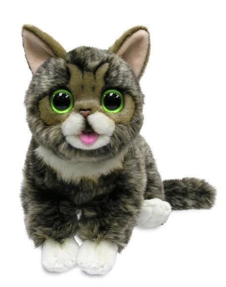 Stuffed Animal Cat In Toys R Us